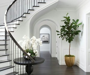 stairs, white, and door image