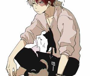todoroki, anime, and cat image