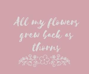 flowers, Lyrics, and quotes image