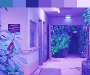 plants, aesthetic, and purple image