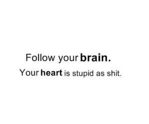 heart, brain, and stupid image