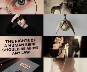 harry potter and albus potter image