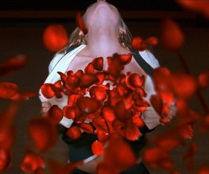 american beauty, cheerleader, and roses image