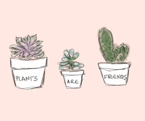 are, cute, and cactus image