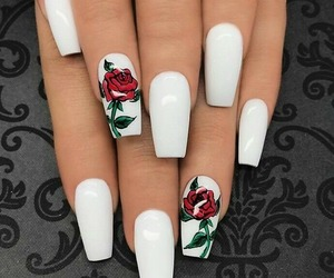 nails, rose, and white image