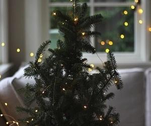 christmas, tree, and lights image