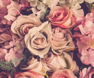 apple, new, and cool image