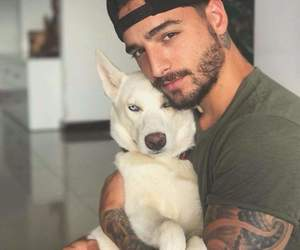 maluma, dog, and boy image