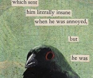 aesthetic, bird, and bird aesthetic image