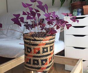 flower, jardim, and plants image