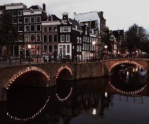 aesthetic, amazing, and amsterdam image