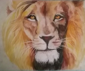 color, dessin, and lion image