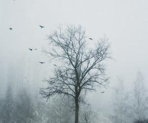 Image by karma