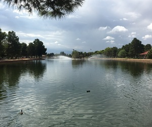 clouds, park, and ducks image