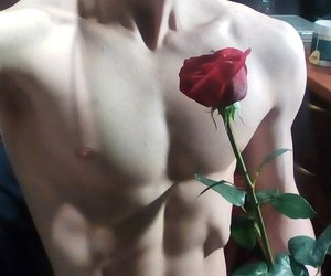 boy, rose, and sexy image