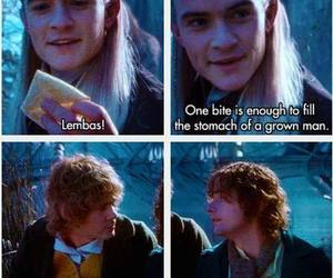 Legolas, lord of the rings, and funny image