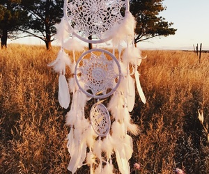 dream catcher, paddock, and photography image