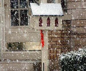 bird house, snow, and winter image