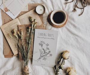 aesthetic, autumn, and books image