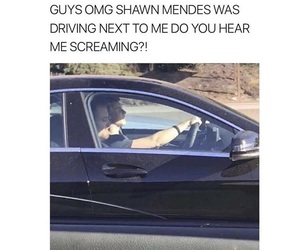 funny, memes, and shawn image