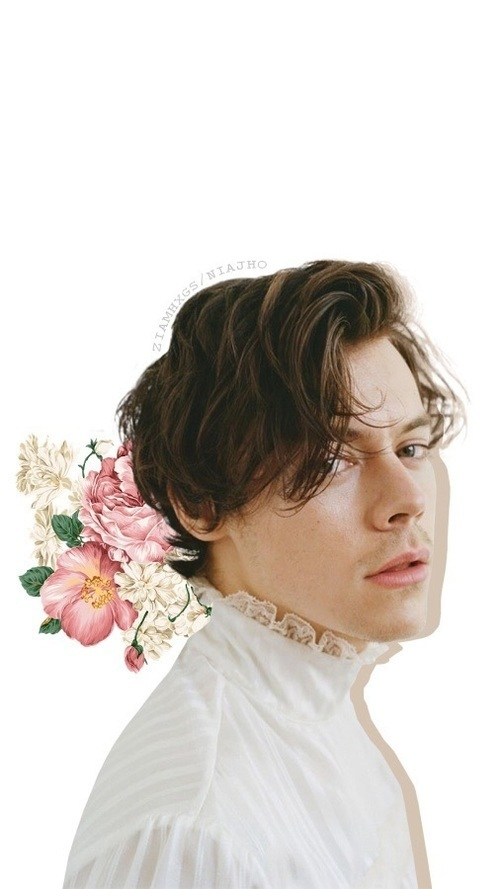 flowers, wallpaper, and Harry Styles image