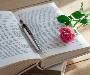 book, pink, and rosa image