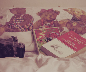 alice in wonderland, camera, and bears image
