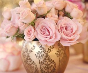 flowers, rose, and roses image