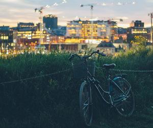 50mm, bicycle, and bike image