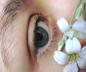 blue, flower, and eye image