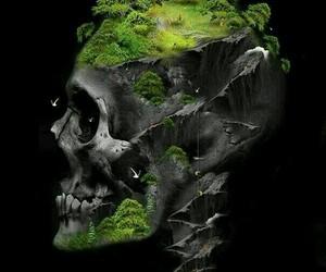 grass, skulls, and skull art image