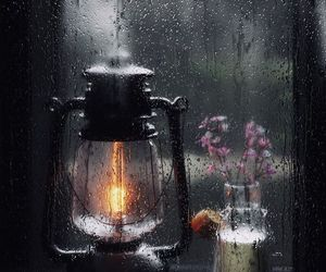 rain, light, and autumn image