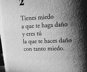 frases, miedo, and book image