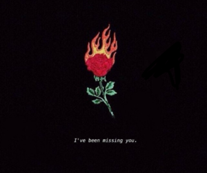 fire, qoutes, and rose image