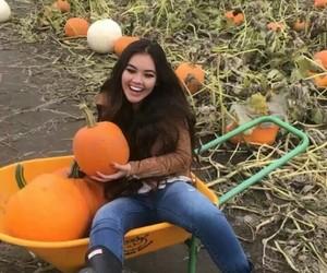 autumn, tumblr, and vivian vo farmer image