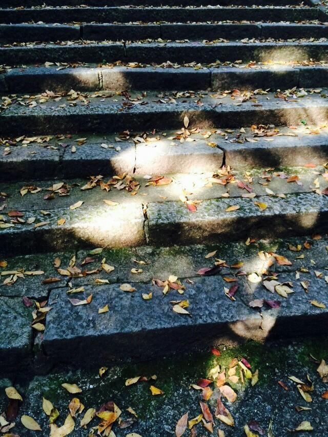 autumn, shrine, and 階段 image