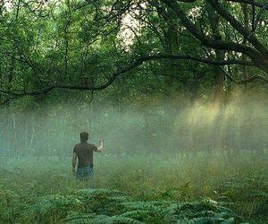 cillian murphy, sunshine, and one perfect shot image