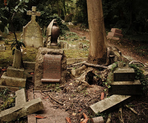 graves, cemetary, and highgate image