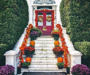 bushes, pumpkins, and stair image