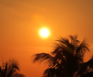 background, sun, and yellow image