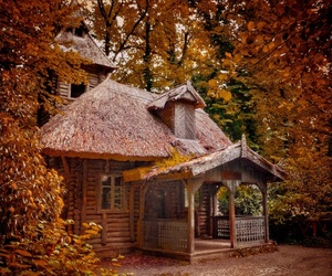 house, autumn, and forest image