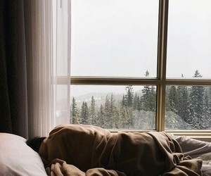 winter, bed, and sleep image