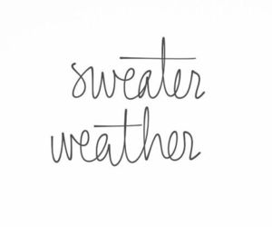 quotes, sweater, and sweater weather image