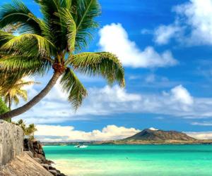 beaches, beachlife, and escape image