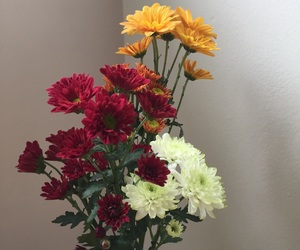 fall, floral, and flowers image