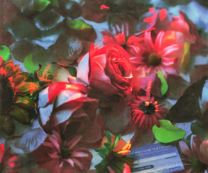 aesthetic and flowers image