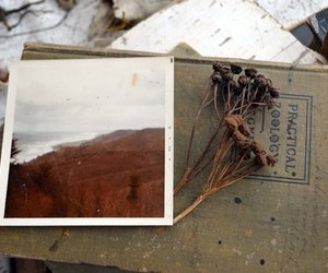 book, cold, and photo image