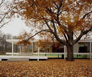 architect, architecture, and design image