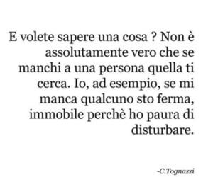 love, frasi italiane, and frasi image