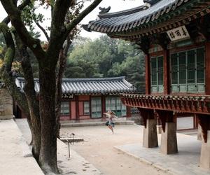 fashion blogger, south korea, and travel image